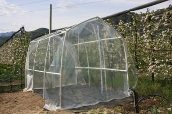 Serra per pomodori for Archi per serre da orto